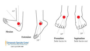 Read more about the article Rehabilitation exercises for sprained ankle in Malaysia