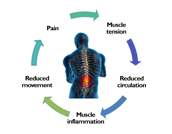 Read more about the article What Mechanisms Are involved In Sensation Of Pain?