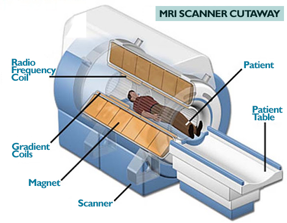 Read more about the article MRI: Diagnostic Exam For Low Back Pain In Malaysia