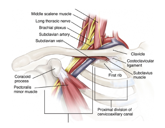 Read more about the article Thoracic Outlet Syndrome Treatment in Kuala Lumpur, Malaysia